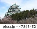 梅と名古屋城天守閣 47848452