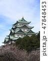 梅と名古屋城天守閣 47848453
