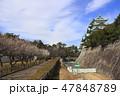 天守閣木造復元工事が始まる名古屋城にて 47848789