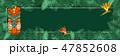 トロピカル 熱帯 フレームのイラスト 47852608