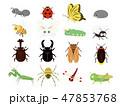 カワイイ昆虫セット1 47853768