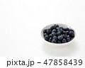 果物 フルーツ ブルーベリーの写真 47858439