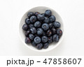 果物 フルーツ ブルーベリーの写真 47858607
