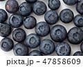 果物 フルーツ ブルーベリーの写真 47858609