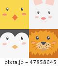 動物 顔 面のイラスト 47858645