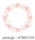 桜 春 フレームのイラスト 47865339