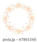 桜 春 フレームのイラスト 47865340