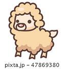 アルパカ ラマ 動物のイラスト 47869380