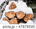 ウッド 木 丸太の写真 47878585