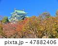 【愛知県】紅葉と名古屋城大天守 47882406