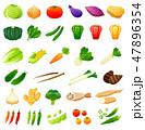 野菜 セット 白バックのイラスト 47896354