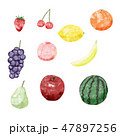 水彩 果物 フルーツのイラスト 47897256