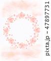 桜 春 フレームのイラスト 47897731