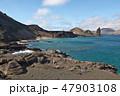 ガラパゴス諸島 世界遺産 海の写真 47903108
