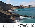 ガラパゴス諸島 世界遺産 海の写真 47903110