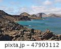 ガラパゴス諸島 世界遺産 海の写真 47903112