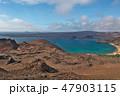 ガラパゴス諸島 世界遺産 海の写真 47903115