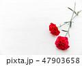赤いカーネーション プレゼント・母の日・花束 47903658