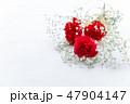 赤いカーネーション プレゼント・母の日・花束 47904147