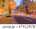 大阪_御堂筋光の饗宴 47912978