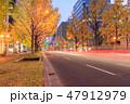 大阪_御堂筋光の饗宴 47912979
