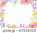 花 植物 フレームのイラスト 47916326