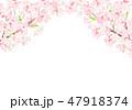 桜 春 花のイラスト 47918374