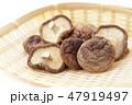 干し椎茸 47919497
