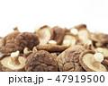 干し椎茸 47919500