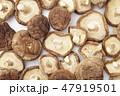 干し椎茸 47919501