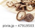干し椎茸 47919503