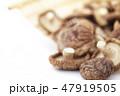 干し椎茸 47919505