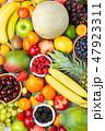 フルーツ 果実類 果物の写真 47923311