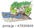 石川県羽咋郡/能登金剛 47930849