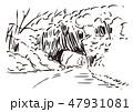 広島県庄原市・神石郡/帝釈峡 47931081
