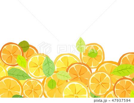 フェルト 柑橘類 コラージュ 47937594