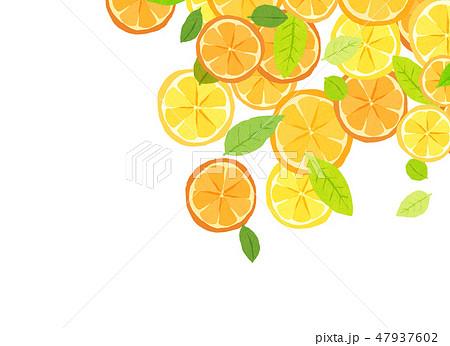 フェルト 柑橘類 コラージュ 47937602
