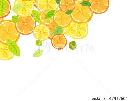 フェルト 柑橘類 コラージュ 47937604