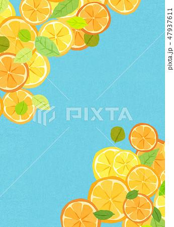 フェルト 柑橘類 コラージュ 47937611