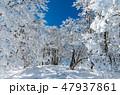 明神平の霧氷風景 47937861