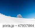 明神平の霧氷風景 47937864