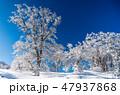 明神平の霧氷風景 47937868