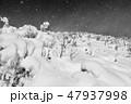 モノクロ風景写真 47937998