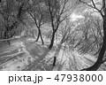 モノクロ風景写真 47938000