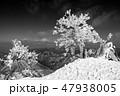 モノクロ風景写真 47938005