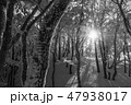 モノクロ風景写真 47938017