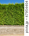 フェンス 垣根 柵の写真 47954404
