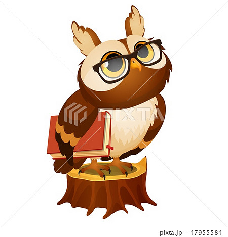Wise owl with a book stands on a stump isolated on white background. Vector cartoon close-up 47955584