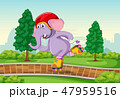 Elephant playing roller skate in the park 47959516