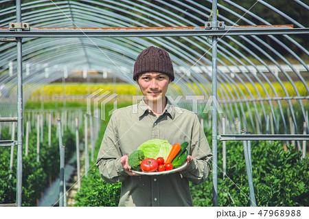 就農 ふるさと納税 47968988